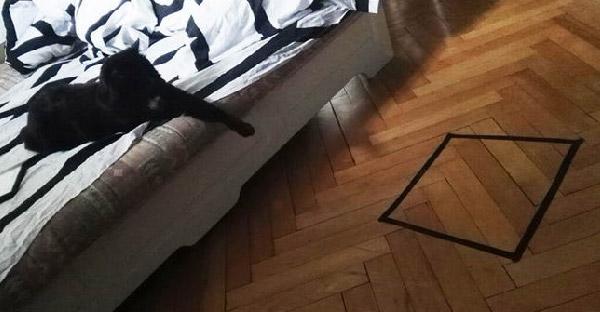 ชายหนุ่มวางกับดักแมวเป็นวงกลมแต่ไม่สำเร็จ จึงลองทำเป็นรูปทรงอื่นแถมได้ผลซะด้วย