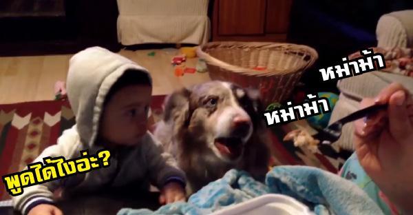 คุณแม่สอนลูกให้เรียกหม่าม้า แต่เจ้าหมาตัวดีขโมยซีนแทน จนกลุ่มคุณแม่ขำลั่นบ้าน!