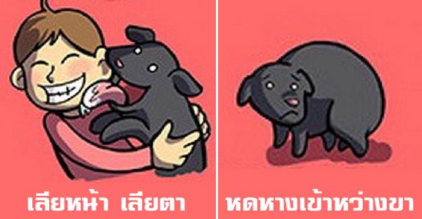 12 ภาษากายง่ายๆของสุนัข ที่จะทำให้เข้าใจมากยิ่งขึ้น