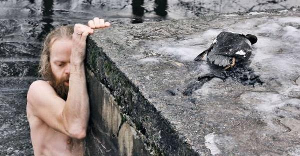 เหล่าสัตว์โลกที่ไม่อาจมีชีวิตรอดจนถึงทุกวันนี้ ถ้าไม่มีคนแปลกหน้าช่วยชีวิตเอาไว้