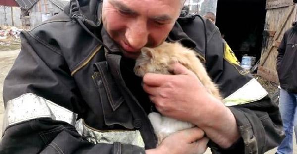 วินาทีช่วยชีวิตแมวเหมียวที่ติดในสปริงรถยนต์ ที่ถูกขับมาไกลกว่า 80 กิโลเมตร