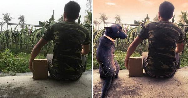 เมื่อหมาเพื่อนรักจากไปแต่เขาไม่มีภาพคู่เลย จึงวอนชาวเน็ตช่วยจนได้ภาพที่ระลึกอันน่าทึ่ง