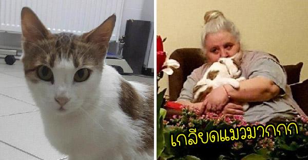 หลานฝากเอาแมวจรจัดมาให้ยายที่เกลียดแมวเลี้ยง 2-3 วัน เป็นเหตุให้ยายกลายเป็นทาสแบบไม่รู้ตัว