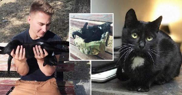 ทหารหนุ่มทนลูกอ้อนลูกแมวดำไม่ไหว จึงพากลับประเทศไปเลี้ยงดูบูชาซะเลย