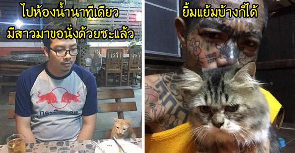 มัดรวมภาพพร้อมแคปชั่นเด็ดๆ ฮาจริงอะไรจริงจากกลุ่มทาสแมว