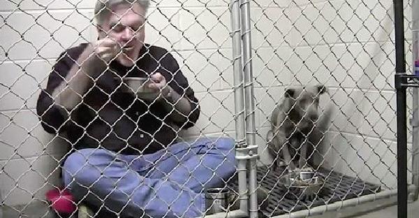 คุณหมอขังตัวเองและกินข้าวกับสุนัขไร้บ้านที่หวาดกลัว เพื่อสร้างความเชื่อใจให้กลับมาอีกครั้ง