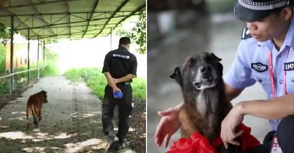 นายตำรวจอาสาดูแลสุนัขตำรวจเกษียณอายุไว้เอง หลังทำงานรับใช้มานานกว่า 11 ปี