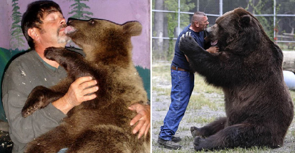 มนุษย์พ่อช่วยชีวิตหมียักษ์โคดิแอค ชุบเลี้ยงจนเติบโตแต่จิตใจไม่ต่างจากลูกหมีตัวน้อยๆ
