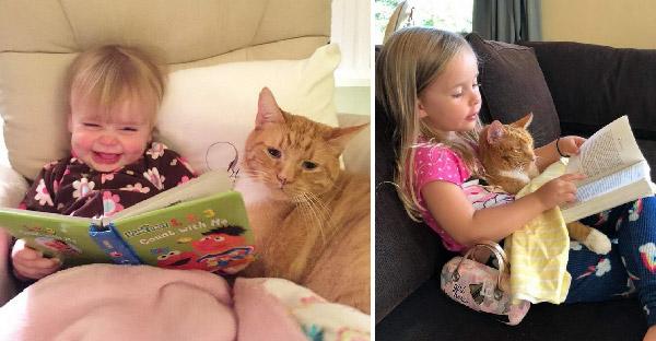 สาวเก็บแมวไร้บ้านมาเลี้ยงและสิบสามปีต่อมา มันกลายเป็นเพื่อนสนิทและฟังทุกอย่างที่เธอเล่า