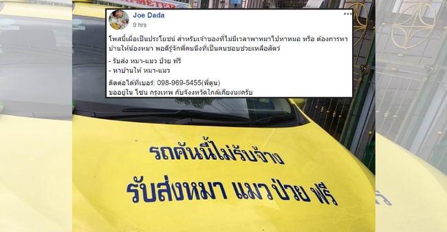 ชาวเน็ตแห่ยกย่องพี่แท็กซี่ใจดี รถคันนี้ไม่รับจ้างแต่รับส่งหมาแมวป่วยฟรี