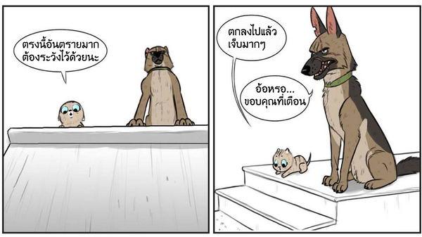 การ์ตูนลูกแมวแสนซื่อกับพี่ตูบหน้าโหด น่ารักอ่านเพลินจนยิ้มไม่รู้ตัว (◕ᴥ◕)