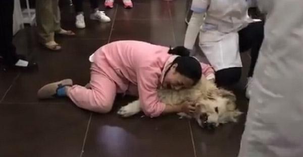 """เจ้าของกอดหมาสุดรักและร้องไห้อย่างเสียสติ หลังเพื่อนบ้านรวมหัวกัน """"วางยา"""""""