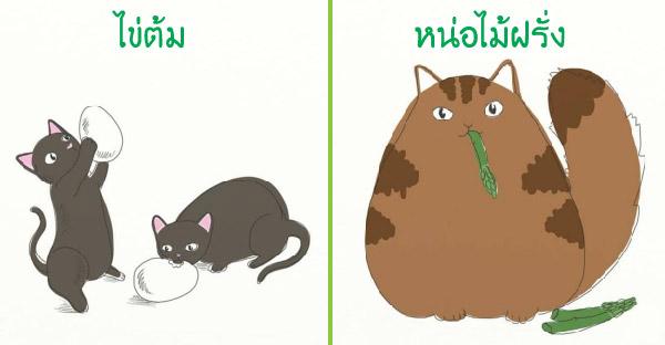 10 อาหารที่แมวเหมียวกินได้ แถมมีประโยชน์เยอะอีกด้วย
