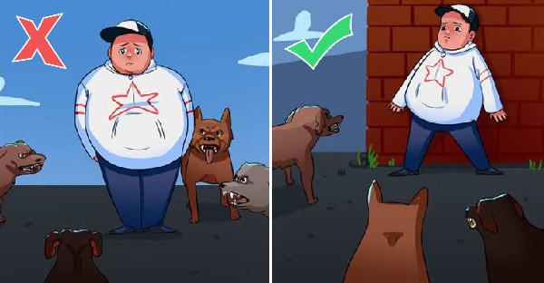 13 เคล็ดลับในสถานการณ์คับขัน เมื่อเผชิญหน้ากับสุนัขที่พยายามเข้ามาจู่โจม