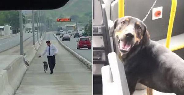 คนขับรถบัสหยุดรถเพื่อลงไปช่วยหมาจรจัดกลางถนน ด้านผู้โดยสารบนรถปรบมือกันสนั่น