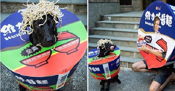 หนุ่มจับหมาคอสเพลย์ฮาโลวีนอย่างฮา เหตุเพราะสิ้นเดือนแล้วคิดถึงบะหมี่กึ่งสำเร็จรูป