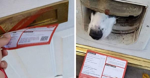 บุรุษไปรษณีย์ส่งจดหมายไม่ถึงซักที เพราะเจ้าตูบคาบออกมานอกประตูทุกครั้ง