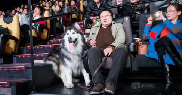 ชายหนุ่มเหมาโรงเพื่อให้สุนัขสุดรักดูหนังที่ชอบ ก่อนที่มันจะตาบอดไปตลอดกาล