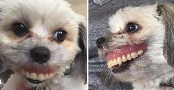คุณพ่อถอดฟันปลอมนอนหลับ ก่อนตื่นมาเจอตัวการส่งยิ้มหวานให้