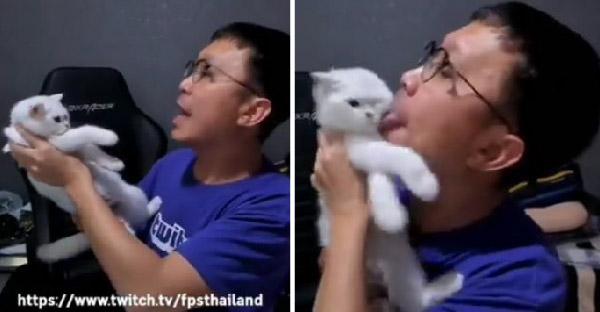 สตรีมเมอร์ชื่อดังหัวร้อนเจอแมวเลียขาขณะเล่นเกม จัดหนักคืนเลียมาเลียกลับไม่โกง