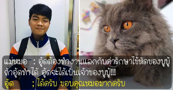 """หนุ่มน้อยขอทำงานแลก """"ชีวิตแมว"""" ที่แอบรักและเล่นด้วยมานานนับปี"""