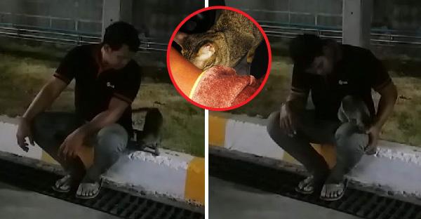 แฟนหนุ่มไปเข้าห้องน้ำ ได้ของแถมเป็นน้องแมวกลับออกมา สุดท้ายแพ้ใจรับกลับไปเลี้ยงซะเลย