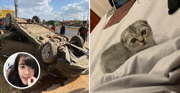 สาวขับรถเจอ 18 ล้อเบียดจนพลิกคว่ำ เธอปลอดภัยแต่แมวหายไป จึงโพสต์วอนชาวเนตช่วยตามหาให้ที