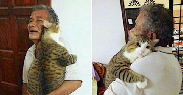 """เจ้าของฝาก """"อากงเลี้ยงแมว"""" พอกลับมาก็เจอความจริง ว่ามันเปลี่ยนใจจากเขาไปซะแล้ว"""