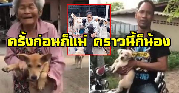 ครั้งก่อนแม่เอามา ครั้งนี้น้องพามาบ้าง ครอบครัวรักหมาแห่งบ้านแก้วตา เพื่อน้องหมาจร