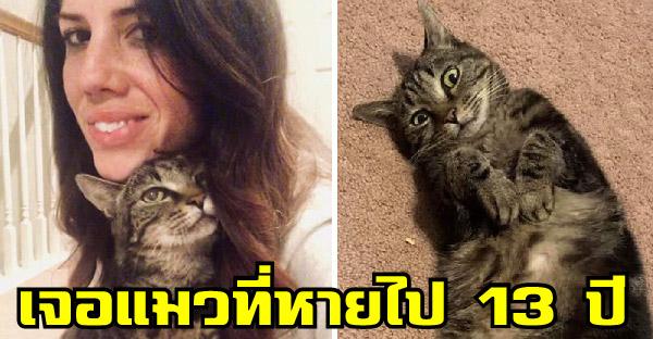 สาวพบแมวที่หายไปนาน 13 ปี กับเรื่องราวที่เหมือนปาฏิหาริย์