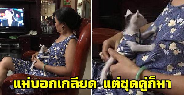 คุณแม่บอกว่าเกลียดแมวแต่ใส่เสื้อคู่ด้วยกันเฉย ขนาดลูกแท้ๆยังไม่เคยใส่คู่แบบนี้เลย