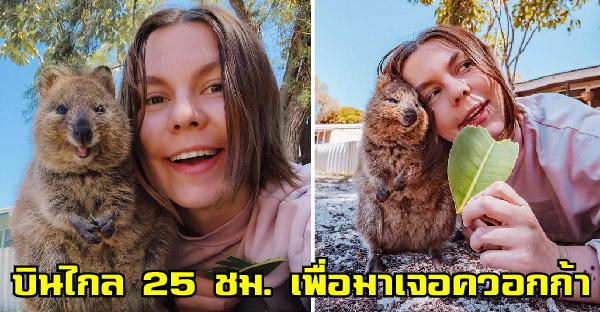 """คู่รักบินไกลนาน 25 ชั่วโมง เพื่อไปเจอ """"ควอกก้า"""" สัตว์ที่มีความสุขที่สุดในโลก และมันคุ้มค่าจริงๆ"""
