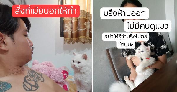 สงกรานต์ของสามีทาสแมว เมื่อเมียกลับต่างจังหวัด ก็ต้องเลี้ยงแมววนไป