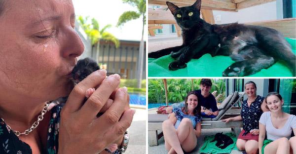 ชาวต่างชาติน้ำตาไหล หลังรู้ว่าแมวที่ให้อาหารทุกวันเพิ่งคลอดลูก และไม่สามารถพากลับประเทศได้
