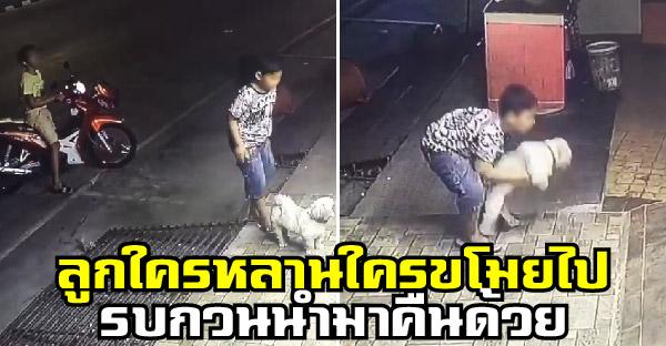 วงจรปิดจับภาพเด็กชายแอบขโมยหมา เจ้าของวอนช่วยเอากลับมาคืนให้ด้วย