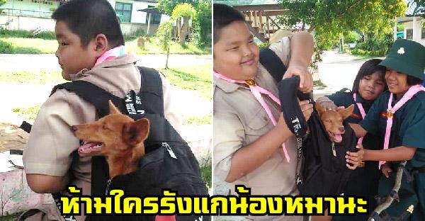 น้องหมาถูกปล่อยทิ้งวัด นักเรียนจึงเอามันใส่กระเป๋ามาโรงเรียน เพราะกลัวใครจะมารังแก