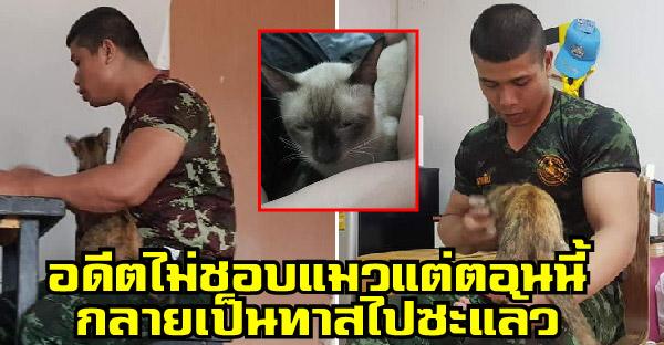ทหารหนุ่มไม่ชอบแมว แต่แฟนสาวต้องย้ายเข้าบ้าน พร้อมแมวอีกสามตัว สุดท้ายก็อย่างที่เห็น