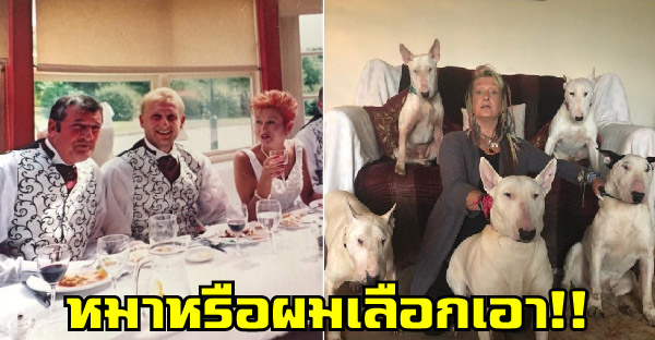 คู่รักแต่งงานกันมา 25 ปีต้องเลิกกันเพราะหมา หลังสามีเหลืออดจึงให้เลือกระหว่างหมากับเขา