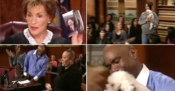 ชายหนุ่มฟ้องสาวว่าขโมยหมาไป ผู้พิพากษาจึงให้น้องหมาเลือกเอง ว่าจะอยู่กับใคร