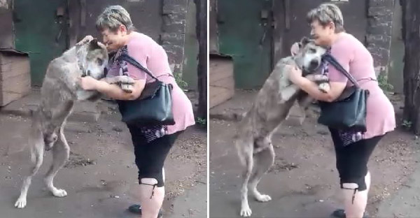 เจ้าของร่ำไห้กอดสุนัขด้วยความคิดถึง หลังหายตัวไปสองปี ได้เจออีกทีเพราะเฟสบุ๊ค