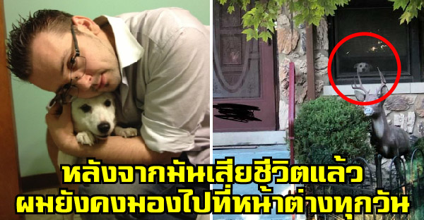 น้องหมาเฝ้าคอยเจ้านายกลับบ้านทุกวันตลอด 11 ปี จนถึงวันสุดท้ายของชีวิต