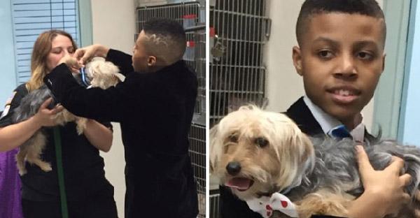 เด็กหนุ่มก่อตั้งบริษัทเพื่อช่วยเหลือสัตว์ไร้บ้านด้วยวัยแค่ 11 ปีเท่านั้น