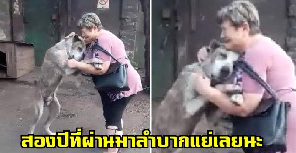 เจ้าของร้องไห้กอดสุนัขด้วยความคิดถึง หลังหายตัวไปสองปี ได้เจออีกทีเพราะเฟซบุ๊ค