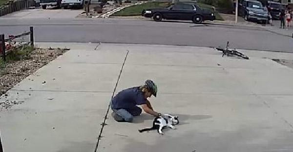 เด็กหนุ่มขี่จักรยานมาเล่นกับแมวตาเดียวที่ไม่มีใครกล้าเข้าใกล้ แถมเกาพุงให้อย่างฟิน