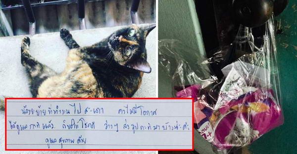 สาวห้องตรงข้ามช่วยเลี้ยงแมวหลายปี ถึงไม่เคยเห็นหน้า แต่วันย้ายออกทิ้งไลน์อย่าลืมส่งภาพแมวมาให้ดูด้วย