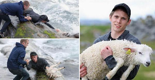 13 เหตุการณ์ช่วยเหลือสัตว์โลกสุดตราตรึงใจบนโลกออนไลน์