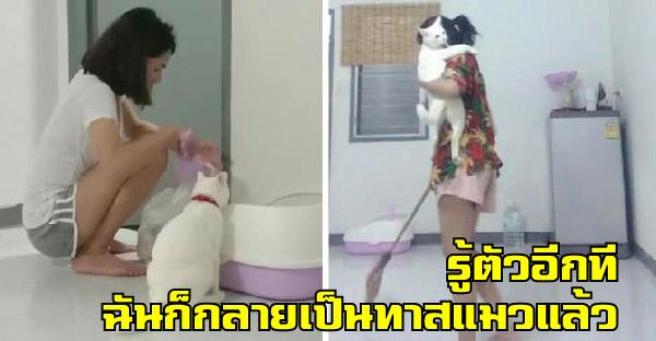 สาวรักสัตว์มากแต่ไม่เคยคิดที่จะเลี้ยงแมว รู้ตัวอีกทีก็เป็นทาสพวกนางไปซะแล้ว