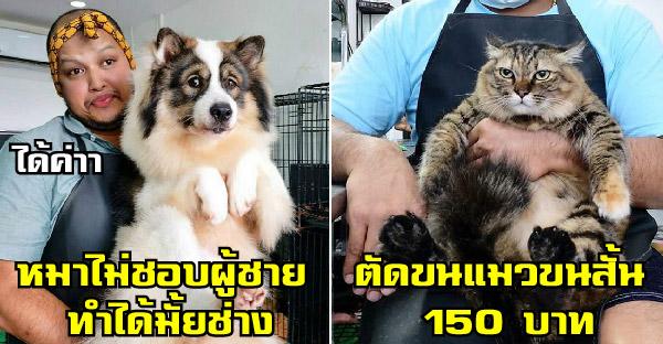 มัดรวมความเฮฮาของช่างท้อปกับหมา-แมว ที่เห็นแล้วอดขำไม่ได้จริงๆ