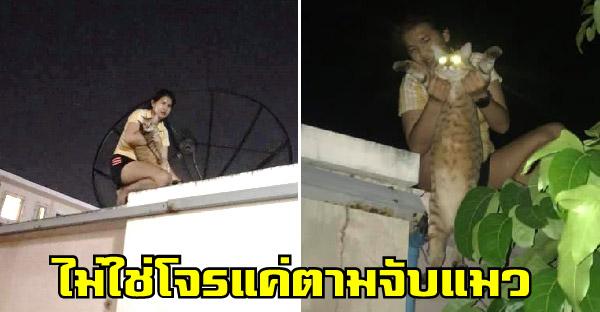 สาวปีนกำแพงตามจับแมวกลางดึก เคยตามจับถึง 8 โมงเช้า แถมเพื่อนบ้านเกือบแจ้งตำรวจแล้ว