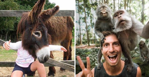 20 ภาพถ่ายสมบูรณ์แบบของเหล่าสัตว์โลก ที่ดูเจ๋งไปอีกขั้นเพราะความบังเอิญ